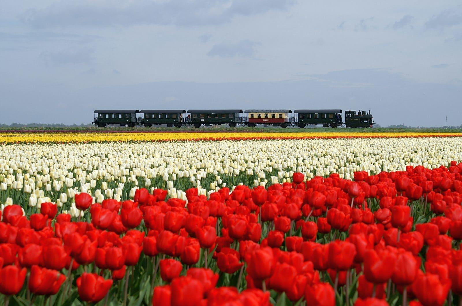 Dampfeisenbahn Medemblik-Hoorn